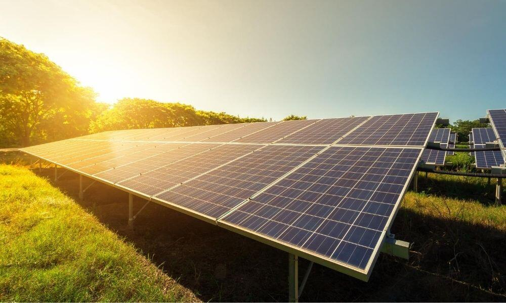 How Businesses Can Save Money with Solar Panels